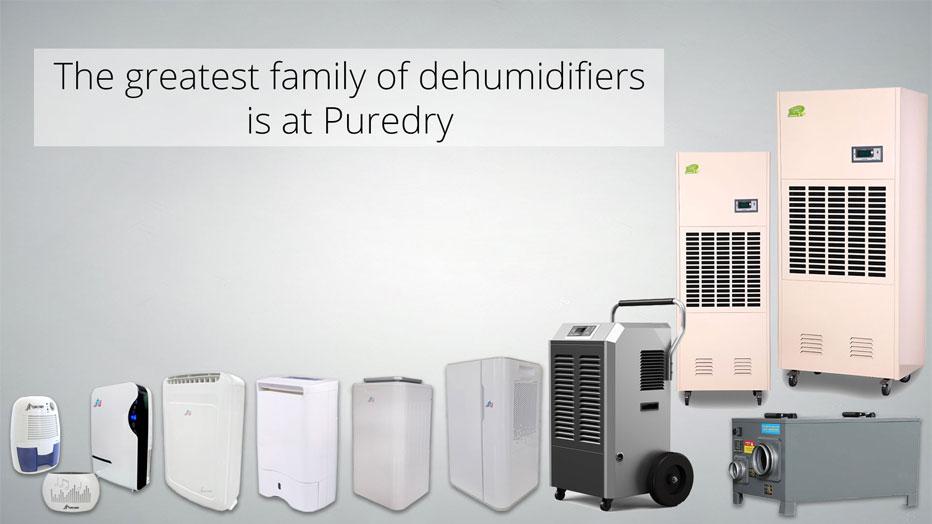 Greatest-family-dehumidifiers